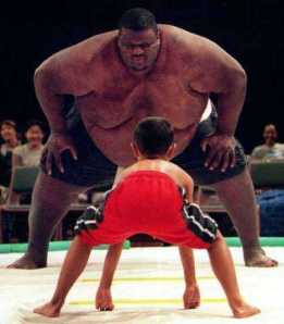 david-and-goliath-sumos22
